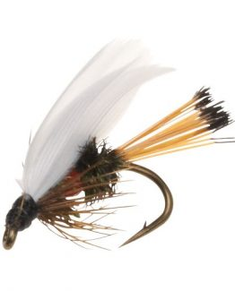 Royal Coachman Fishing Fly