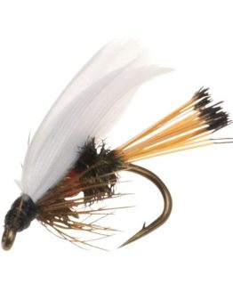 Royal Coachman Fishing Fly