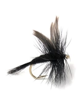 Black Gnat Fishing Fly