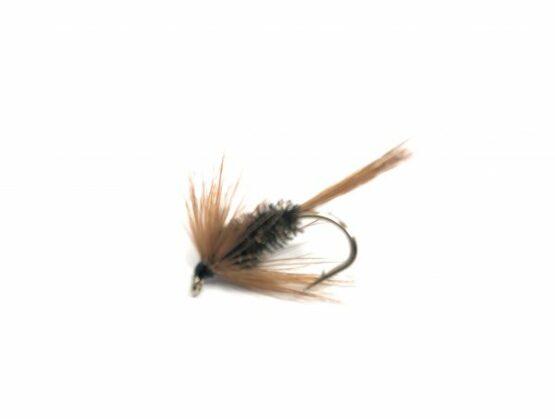 Brown Hackles Brown