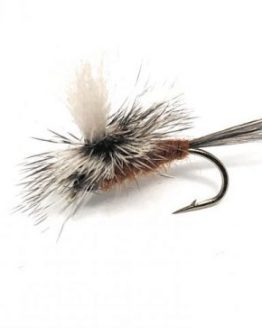 Gulper Special Dry Brown