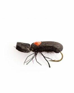 Spotlight Black Beetle