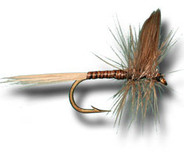 Blue Quill